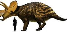 Dinosaurs and Prehistoric animals / An assortment of pictures of my favorite dinosaurs and prehistoric animals