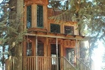 Treehouses / by Francine Bacchini