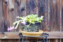 Repurposed and Upcycled / for art, especially garden art, the home, for organizing and just because it's a good idea.