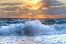 beach/ocean beauty