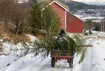 Country Livin'- White Country Christmas