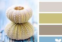 Color Palettes / Colour#Paint