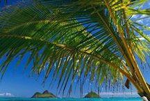 Hawaii - Must. Go. Again.