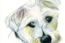 Dog Artwork, Drawings and Paintings / My dog drawings and paintings.  Artwork by Martin Balmer.