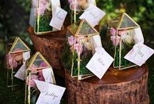 Wedding Favours / From cookies to greenery, this board has got every type of wedding and party favor you can imagine!