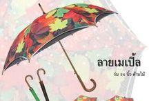 "24"" Umbrella ร่มยาว 24 นิ้ว / 24"" Umbrella ร่มยาว 24 นิ้ว ร่ม Raindeer"