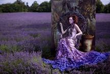 Inspiration.Photography.Fashion / by Daniel Walsh