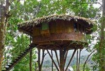 Casas en Árboles / Refugios y casas en árboles