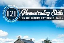 Maintaining the Homestead / Helpful ways to maintain homestead property