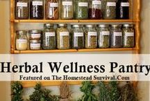 Health, Wellness and Natural Living / Improve your overall health and wellness with chemical-free, organic and natural, homemade products.  Learn natural living strategies to improve your daily life.