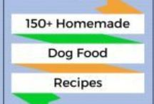 My Spoiled Dogs / Healthy recipes for Fido and some other fun stuff