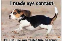 All God's Critters Esp. Dogs / All God's Creatures Great and Small especially dogs / by Michele Temple