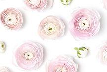 ⭐️Bloemen/Flowers