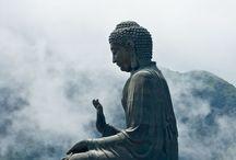 ⭐️Boeddha/Buddha