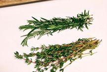 ⭐️Kruiden/Herbs