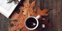 Fall ☁