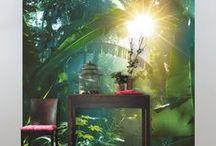 Collection : AMAZONIA / La collection de papiers peints Amazonia s'inscrit comme une véritable ode à la nature ! Un florilège de motifs aux influences mélangées imagine avec style un monde végétal qui oxygène nos intérieurs. Amazonia, c'est la respiration d'une forêt, cette petite pointe d'exotisme revisité. Le vert d'une végétation luxuriante comme signature !