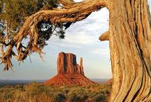 Parcs Ouest Américain / Les grands parcs nationaux de l'Ouest Américain. Des paysages à couper le souffle. Road Trip USA, National American Parks, voyage ouest américain