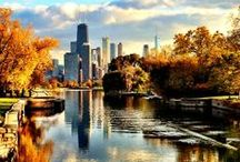 Fall in love with Chicago / What to do, see and eat in Chicago during the fall