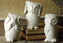 Owlobsession
