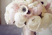 Wedding / by Trisha