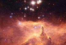 "Stellar / ""You are all stardust."" - Lawrence Krauss / by Rachel Ackerman"