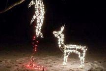Swire Christmas 2013 / Holidaze!