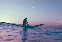 Surf & Boards