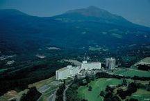 霧島ロイヤルホテル|Kirishima Royal Hotel