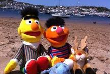Bert, Ernie and Blue Frogs Days Out