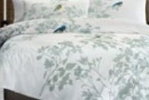 Home Design / Selection of Homewares and Design Ideas / by Trish Cooney