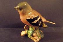 oiseaux beswick england