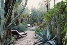 OUTDOOR LIVING / Step out the door and live outside between plants, flowers and lots of sunshine: explore my inspiration board about beautiful gardens, balconies, terraces and backyards.