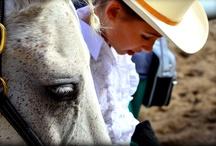 Horse that I love