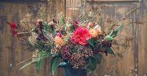 Virágkompozíciók   Flower compositions
