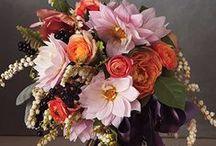 Sussex Wedding Collective: Autumn