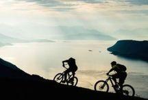 BIKEASS / Bikes