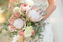 Protea & Pink Roses