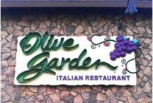 Olive Garden Copycat Recipes / by Debbie Viavattene