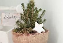 Christmas ideas / by Michela Pozzi