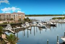 Florida / Florida apartments, activities, and things to do! Fairfield Residential has multiple communities in the state of Florida, including the metro areas of Fort Lauderdale, Jackonsville, Miami, Palm Beach and Tampa . See our full list at http://www.fairfieldresidential.com/communities/.