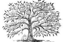 Variations on a Family Tree / Interesting and unusual family tree charts from genealogy and family history