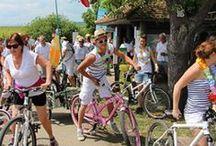 Activités et loisirs en Alsace