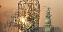 Lifestyle - Birdcages