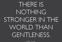 Gentleness is Strength