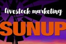Videos | Livestock Marketing / Livestock Marketing offers an analysis of the world livestock markets and insight into successfully navigating these markets. Livestock Marketing is presented by Darrell Peel, OSU Cooperative Extension livestock marketing specialist.