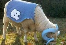 Everything UNC! / Show your school spirit! / by UNC Housing