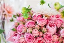 flowers / by Rachel Loveridge