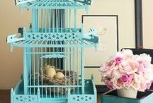 DECOR - BIRD CAGES / There are NO birds in these bird cages :)   ~MHE / by Michelle Eliason