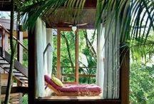 Jungle In
